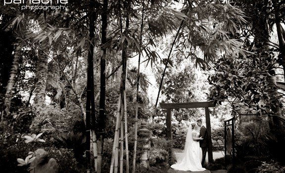 A First Look At The Beautiful Sanctuary Adelaide Zoo Wedding